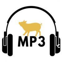 bassistepro-glap-mp3